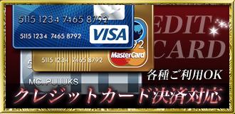 各種クレジット決済可能